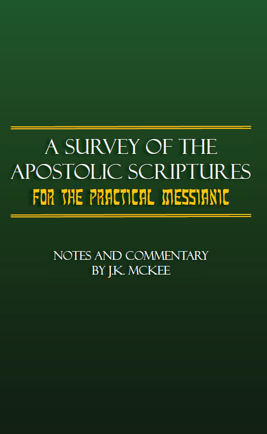 https://outreachisrael.net/bookstore/wp-content/uploads/2018/08/B120P_A_Survey_of_the_Apostolic_Scriptures_for_the_Practical_Messianic.jpg