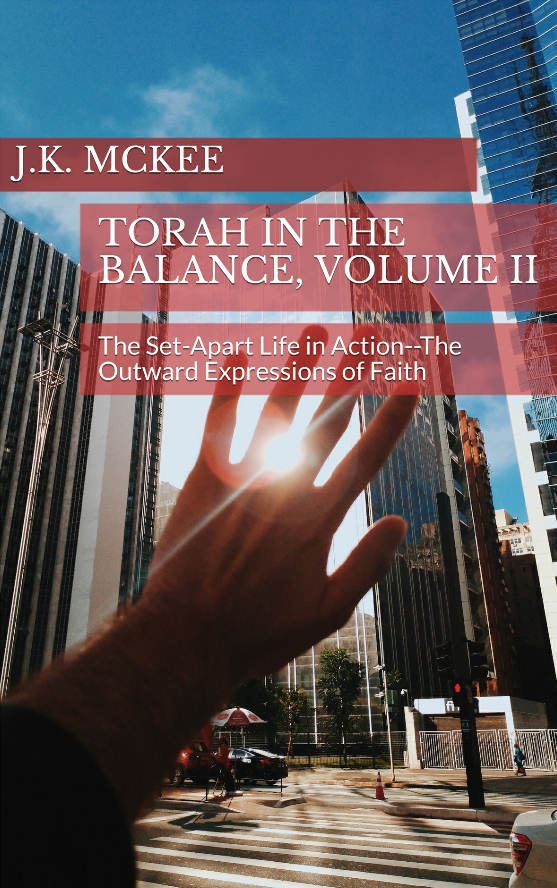 https://outreachisrael.net/bookstore/wp-content/uploads/2018/08/B138P_Torah_In_the_Balance_Volume_II.jpg
