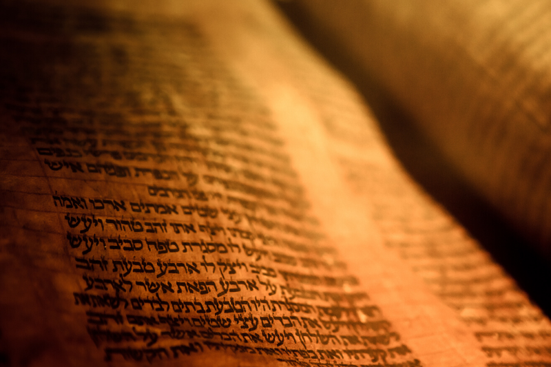 TORAH SCHEDULE & TORAHSCOPE COMMENTARIES