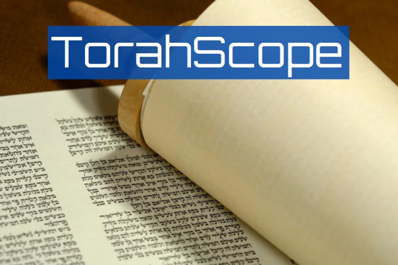 TorahScope Commentaries